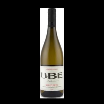 UBE Miraflores 2019